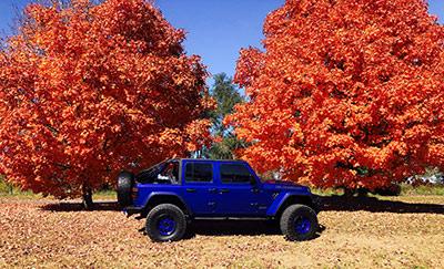 service entreposage toit rigide jeep img